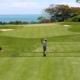 Golf Driver Image